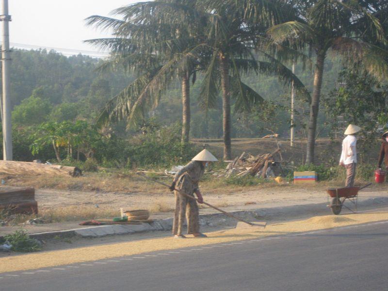 Vietnam 166